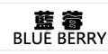 北京藍莓天翼科技有限公司