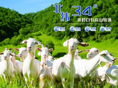 自然羊奶新主張|美力源帶你探索北緯34°天然營養奧秘