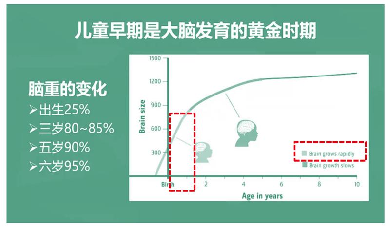 中国脑健康日—关注儿童大脑健康与智力发育