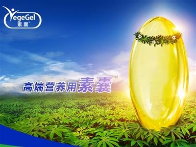 素囊植物基營養型產品 賦能益生菌賽道